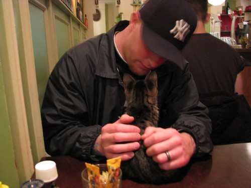 Tom gives the kitty dining etiquette tips