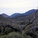 Small photo of Anza Borrego Desert