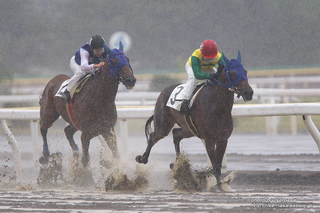 Fight in the heavy rain