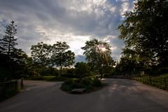 Toronto Zoo-sunset