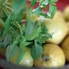 Basil & Citron ... by Berta...