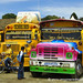 Chicken Buses in Every Style - La Esperanza, Honduras