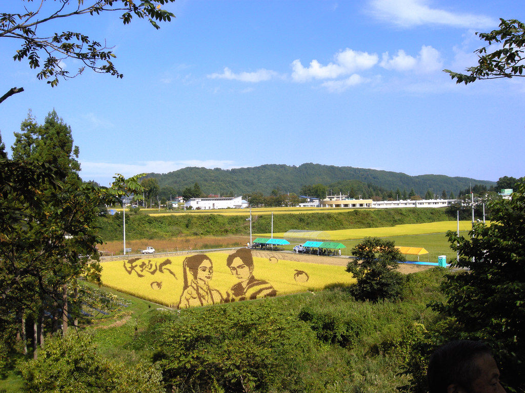 Rice Paddy Field Art in Yonezawa 2009