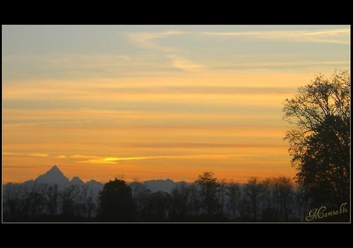 alberi marina torino tramonto cielo azzurro alpi passeggiando monviso fronde venaria nuvolette visitpiedmont catenamontuosa parcodellamandria ingirula marinablu allegrisinasceosidiventa kernotart dovenasceilpo strisciecolorate dolcemomento