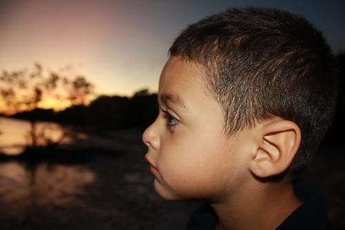 sunset florida aaron profile