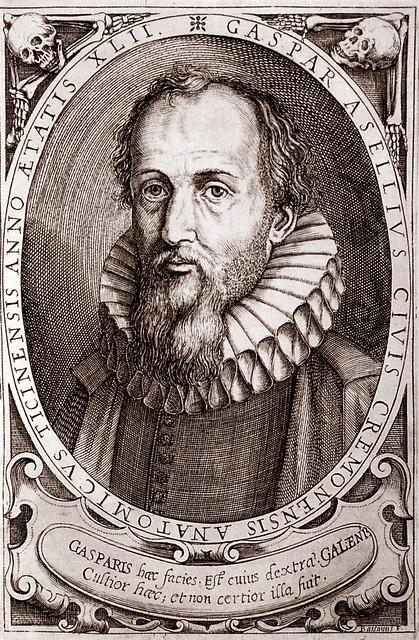 Portrait of Gaspare Aselli, Cesare Bassano, Milan, Braidense Library