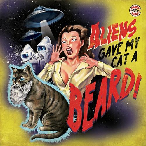 catbeard.jpg