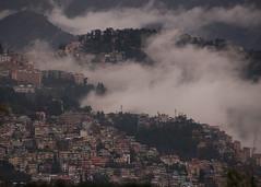 Summer Hill, Shimla