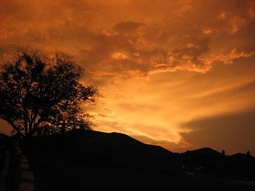 trees sky clouds canon landscape landscapes a520 powershot showqualitywork