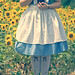 Alice in Wonderland - If I had a World of my own... by Brandon Christopher Warren