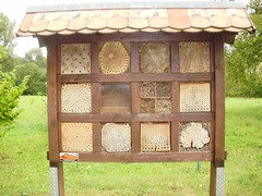 outdoor structure(0.0), gazebo(0.0), agriculture(1.0), beehive(1.0),