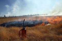 Anderson Mesa prescribed burn