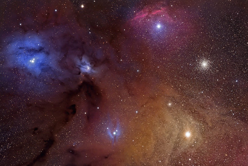 In the clouds of Rho Ophiuchi