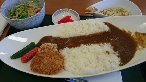 徳山ダムカレー(カレー放流済み)