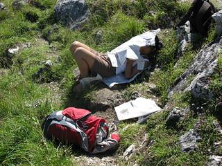 Fockenstein Reading Sleeping Sleep Newspaper Zeitung
