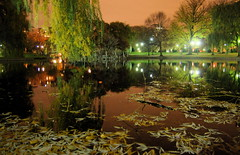 Boston reflected in the Public Garden Lagoon at night by Chris Devers