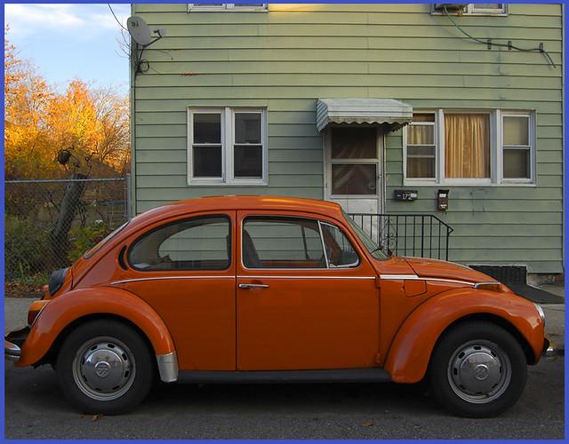 Autumn VW