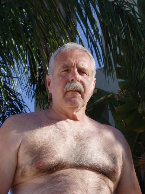 Daddy Silver Hairy Bear Gay Pic