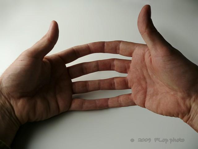 Unamos las manos