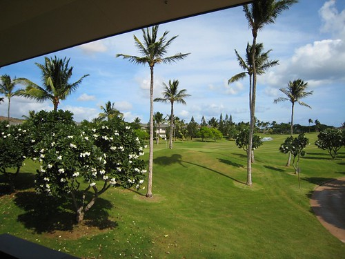 oahu, palm trees, silhouettes, sky, clouds IMG_0205