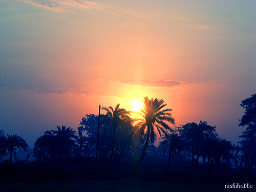 blue trees light sky orange cloud sun color tree colors silhouette clouds sunrise day ray shine village bangladesh bangla nishikabbo