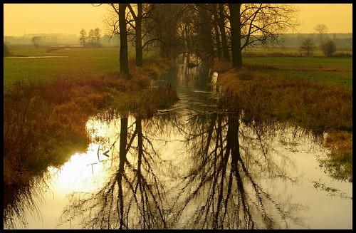 autumn trees sunset sky mist water misty fog reflections river stream foggy poland polska valley reflexions kalisz dębe swędrnia