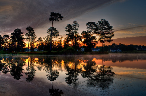 morning trees sky mist lake reflection nature clouds sunrise landscape country northcarolina coats pinetrees hdr waterreflection harnettcounty