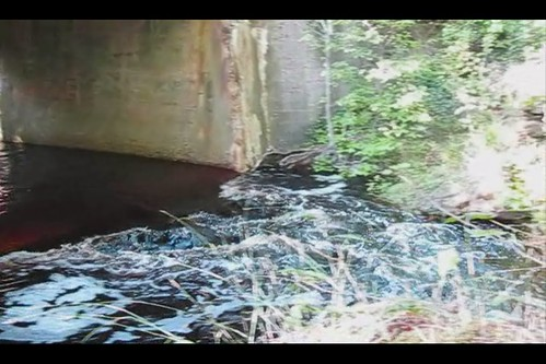river video newjersey stream relaxing peaceful weymouth atlanticcounty weymouthfurnace weymouthforge