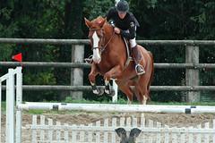 stallion(0.0), animal training(0.0), barrel racing(0.0), animal sports(1.0), equestrianism(1.0), english riding(1.0), eventing(1.0), mare(1.0), jumping(1.0), show jumping(1.0), hunt seat(1.0), equestrian sport(1.0), sports(1.0), recreation(1.0), outdoor recreation(1.0), equitation(1.0), horse(1.0), jockey(1.0),