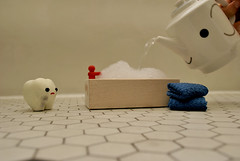 Time for a bath, my little Milk Teef!