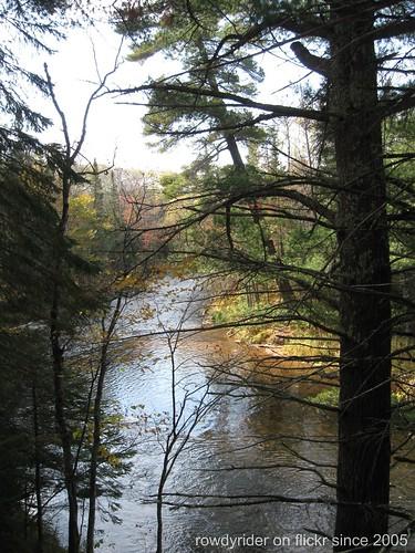 Pine Tree Hole