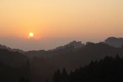 Dawn / 夜明け(よあけ)