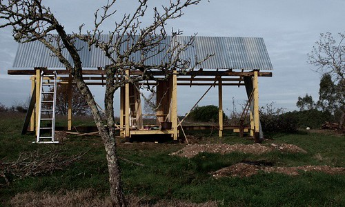 Chicken shed takes shape