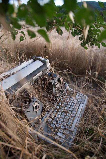 Typewritter in a field - Viviers, France