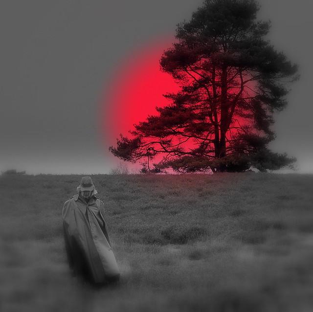 Walking on a dream ...