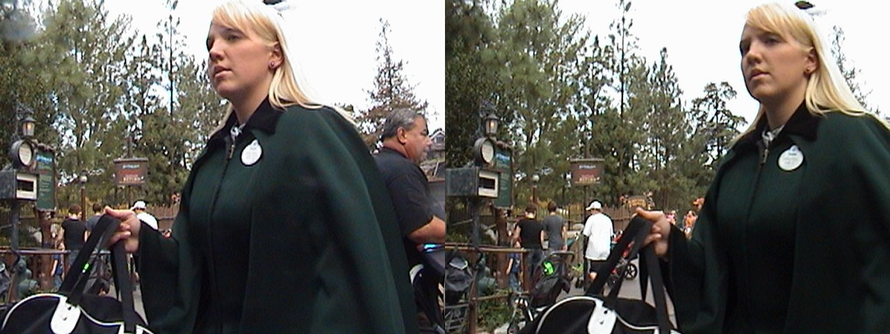 3D, Haunted Mansion Cast Member, Critter Country Lane, Disneyland®, Anaheim, California, 2008.10.31 11:53