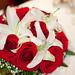 bouquet blush by brian.ch