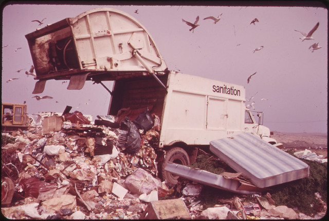 Landfill Operation Is Conducted by the City of New York on the Marshlands of Jamaica Bay. Pollution Hazards and Ecological Damage Have Called Out Strong Opposition 05/1973