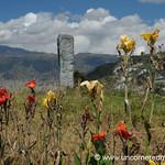 Flowers and Statue - Quito, Ecuador