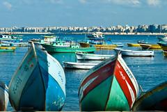 Alexandria-0044