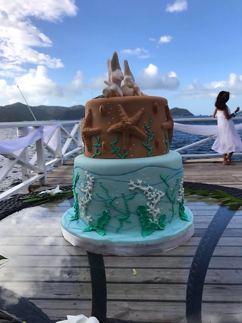 Amazing Cake by Shalima Persad of Edible Arts Sugar Artistry