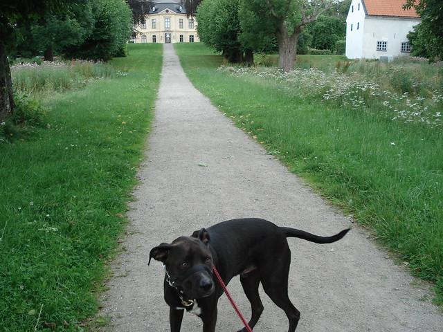 sturehof slott