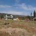 Angora Fire Survey Site E
