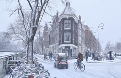 Watching the snowflakes fall in the Jordaan