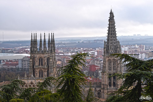 gothic urban panoramic architecture construction burgos spain style landscapes buildings pines horizon fotolia cathedral travel monuments arquitectura medieval religion