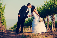 Kaleb & Alissa's wedding at Ponte Family Estate Winery in Temecula