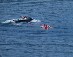 f1 powerboat racing(0.0), watercraft rowing(0.0), jet ski(0.0), vehicle(1.0), sports(1.0), sea(1.0), recreation(1.0), powerboating(1.0), outdoor recreation(1.0), motorsport(1.0), boating(1.0), motorboat(1.0), extreme sport(1.0), water sport(1.0), personal water craft(1.0), watercraft(1.0), boat(1.0),