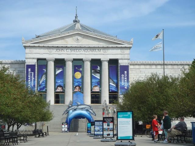 Ripley's Aquarium & Titanic Museum Ticket Combo