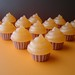 Pumpkin Pie Mini Cupcake Gift Set-Goat's Milk And Glycerin Soap by KcSoapsNmore