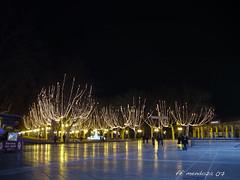 Montpellier  /Noel Nocturne/France